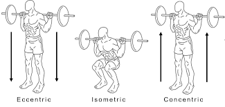 Concentric vs. Eccentric Squats