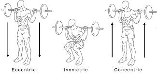 Concentric vs. Eccentric Squats